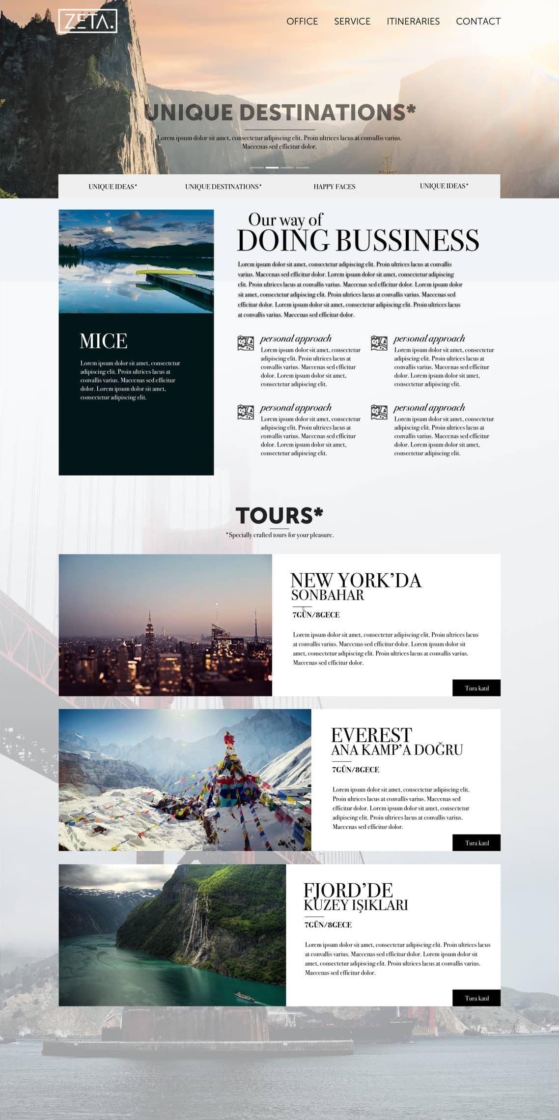 Web Site Design for Zeta
